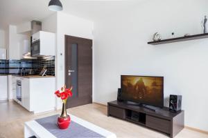 Uma TV ou centro de entretenimento em Kalina Apartment
