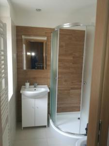 Koupelna v ubytování Apartment Villa Brezno