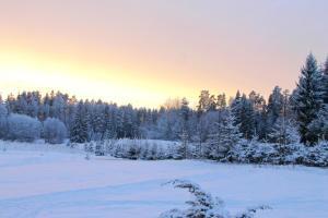 Karumetsa Apartment during the winter