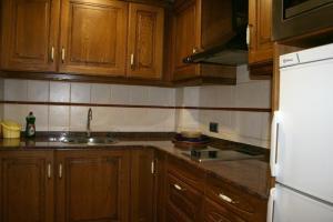 A kitchen or kitchenette at Apartamentos Les Picardes