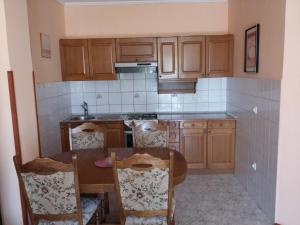 A kitchen or kitchenette at Apartment Pejic 2