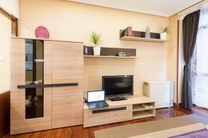 Una televisión o centro de entretenimiento en Apartamento Artekale