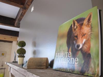 Femme Dominatrice Sur Grenoble Sur Plan Cul Rapide