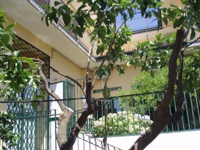 B&B Villa Hortensia - San Giovanni La Punta - Foto 28