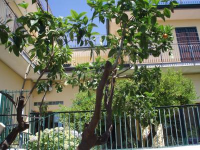 B&B Villa Hortensia - San Giovanni La Punta - Foto 27