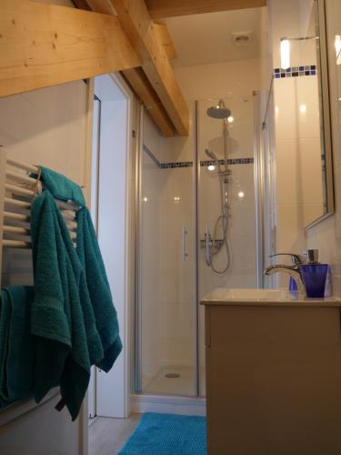 A bathroom at Aparthotel Haas41