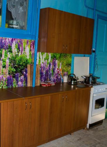 Кухня или мини-кухня в Guest House Astra