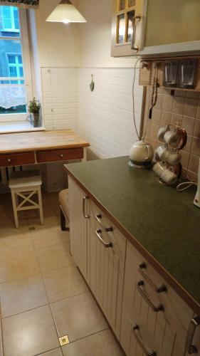 A kitchen or kitchenette at W kamienicy