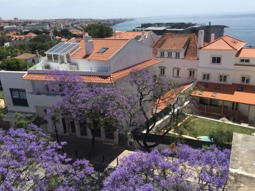 A bird's-eye view of Saboia House