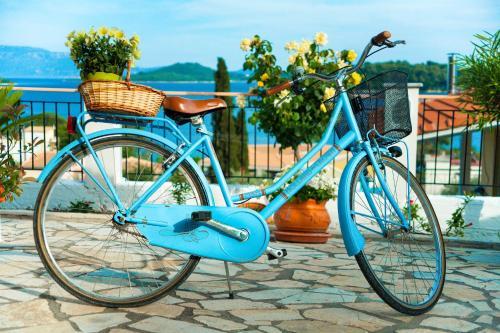 ركوب الدراجة الهوائية في محيط San Lazzaro