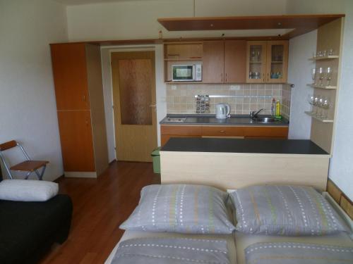Kuchyňa alebo kuchynka v ubytovaní Apartmán Almet 102