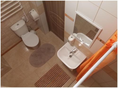 Vonios kambarys apgyvendinimo įstaigoje Jaukus butas Šiaulių miesto centre