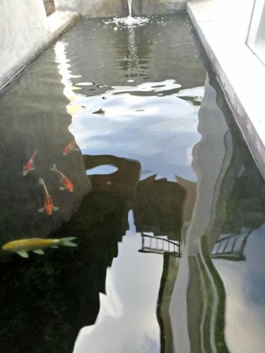 A piscina localizada em LeGong Guesthouse ou nos arredores