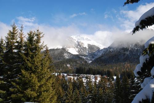 Capricornign im Winter