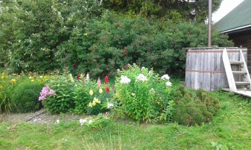 A garden outside Auru Cīruļi