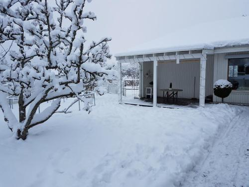 Holiday home close to forest, lake and skiing under vintern