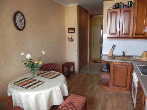 A kitchen or kitchenette at Apartments na Ostrove Knaiphof