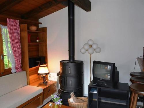TV/Unterhaltungsangebot in der Unterkunft Apartment Ismene, Chalet
