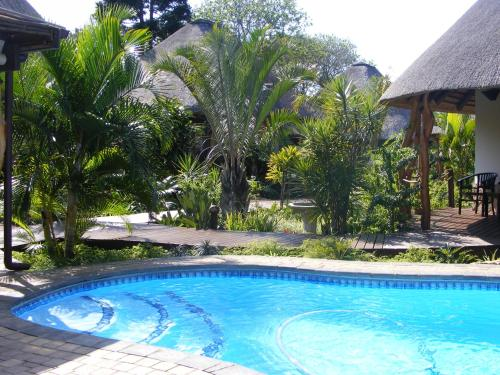 The swimming pool at or near Lodge Afrique