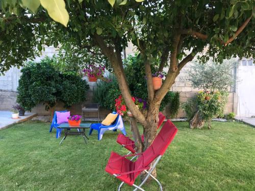 Um jardim em Casa de Férias MariCeu Mirandela