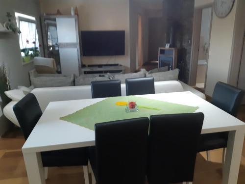 TV in/ali zabaviščno središče v nastanitvi Sanja apartment near to Ljubljana
