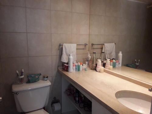 Un baño de Centro Anita