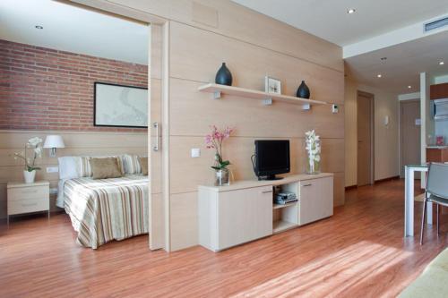 TV a/nebo společenská místnost v ubytování Serennia Cest Apartamentos Arc de Triomf