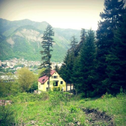 Guest House Borjomi Forest