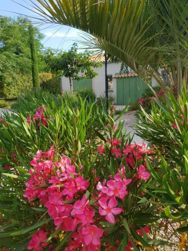 A garden outside Locabed - Le Mas Des Cigales