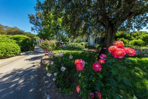 Jardín al aire libre en Residence Club Marina Viva