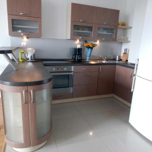 Kuchnia lub aneks kuchenny w obiekcie Apartament Zalesie