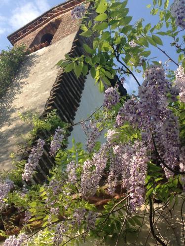 Fiori Campanelle.Bed And Breakfast Tenuta La Campanella In Fiore Arcugnano Italy