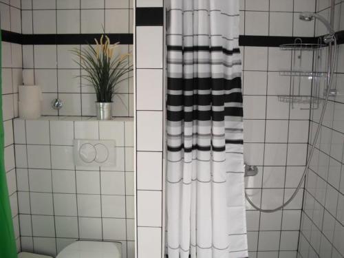 A bathroom at the 5 lofts