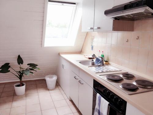 Küche/Küchenzeile in der Unterkunft Appartment Daji