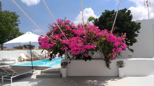 The swimming pool at or near Villa LuxL