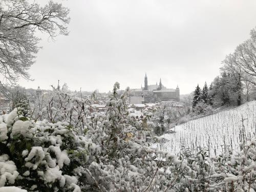 Rebenhaus Meißen im Winter