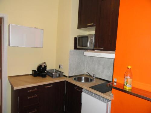 A kitchen or kitchenette at Apartment Viktoria