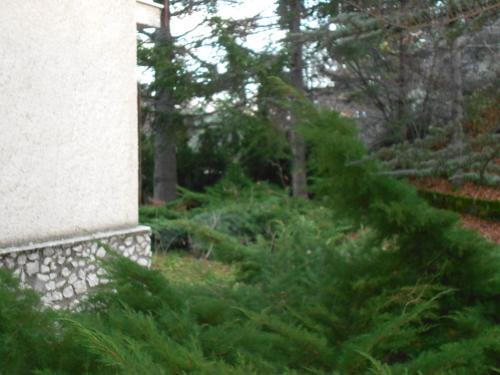 A garden outside Appartamento Roccione