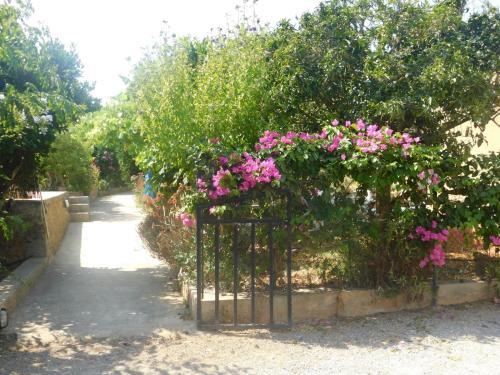 A garden outside Espaciosa Villa Con Piscina Privada