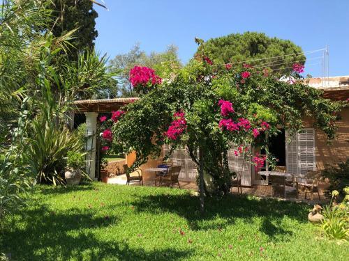Ein Garten an der Unterkunft Cas Quinto