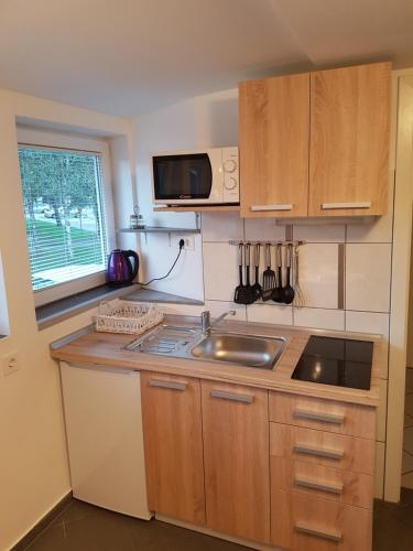 Kuhinja oz. manjša kuhinja v nastanitvi 4 seasons apartment Radovljica