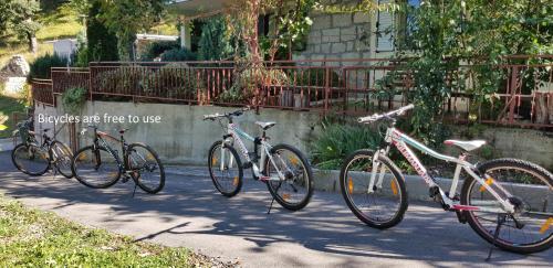 Biking at or in the surroundings of Apartments Cvitini Dvori Garjak