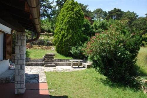 A garden outside Bungalow Bojan