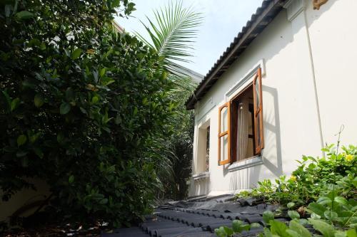 Moon house tropical garden - Lavender