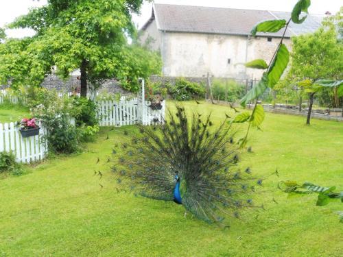 A garden outside Gite du Domaine du Feyel