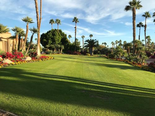 A garden outside Palm Springs-Desert Princess Country Club