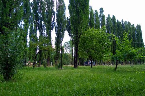 Un paisaje natural cerca de la casa de vacaciones