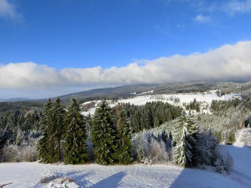 Haus Bergland during the winter
