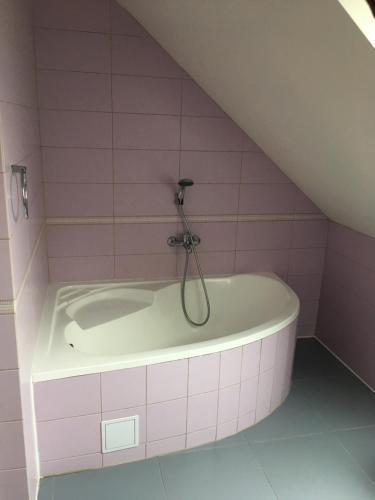 Koupelna v ubytování Apartmány Nikola