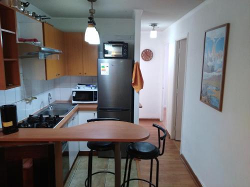 Una cocina o zona de cocina en Apartamento Full Equipado Santiago Centro